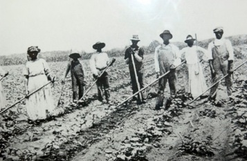 Image result for sharecropping pictures