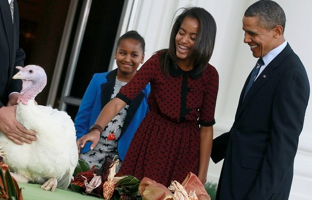 Obama Pardons The National Thanksgiving Turkey