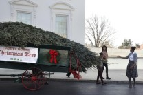 First lady Michelle Obama receives the 2011 White House Christmas Tree