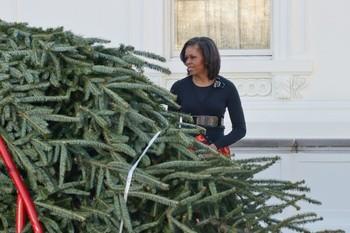 Christmas Tree8