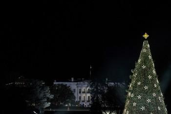 lighting of the National Christmas Tree6