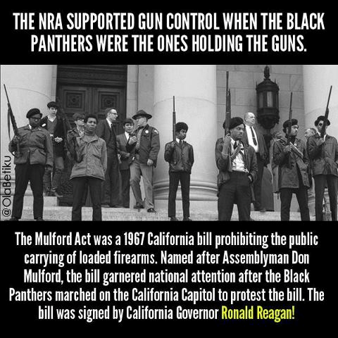 NRA Black Panthers