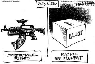 guns&voting-128135_600_zps979d01ae