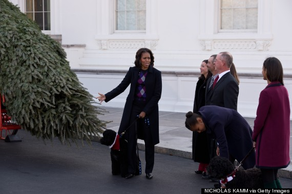 US-POLITICS-OBAMA-TREE