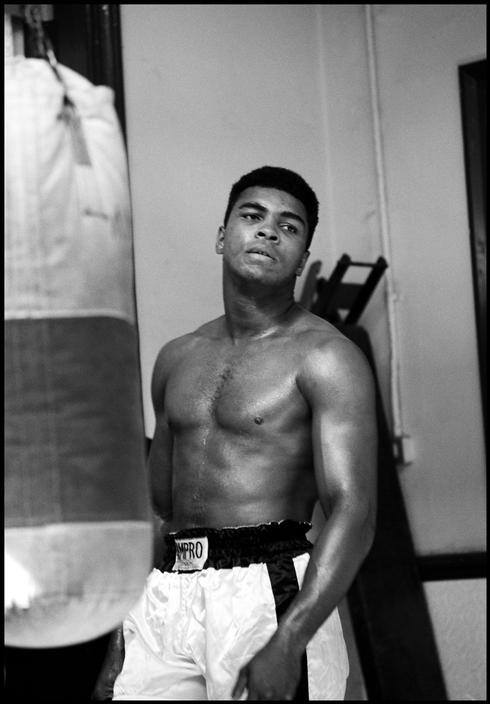 a brief biography of cassius marcellus clay and his career in professional boxing Muhammad ali lost a total of five matches in his professional boxing career he fought a total of 61 matches with 56 wins and 37 knockouts muhammad ali is one of the most famous boxers of all time his quick reflexes and strong punches helped muhammad ali become the first person in history to win .