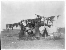 Edward S. Curtis Collection- Drying meat
