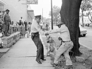 Bull Connor ordered police dogs on black-demonstrators-in-may-1963