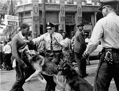 Civil Rights attack dogs