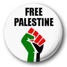 Palestine fist