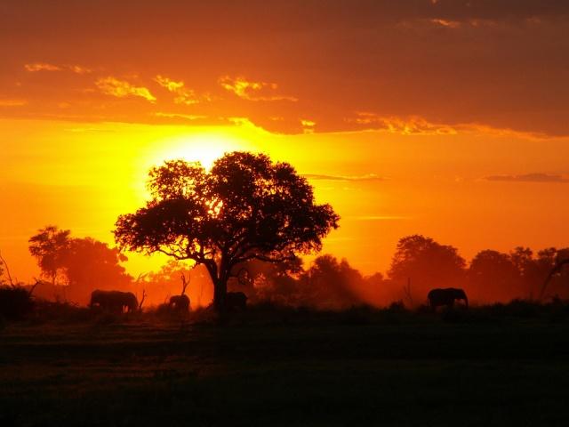 africa sunset 6
