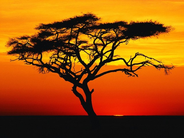 african sunset 5
