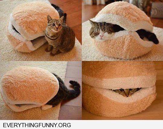 cool-cat-hamburger-bed-pet