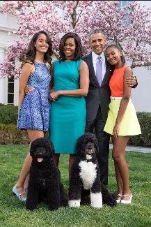 bo obama and sunny