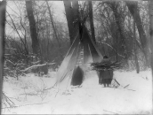 Winter- Apsaroke Apsaroke woman carrying firewood in snow, approaching a tipi Edward S. Curtis Collection