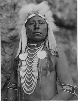 Proud Crow Warrior. An inspiring photograph of Which Way, a Crow Warrior. It was made in 1905 by Edward S. The photo illustrates a Crow Indian wearing a headdress and several necklaces. Edward Curtis photo